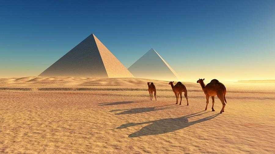 Египет! Специальные предложения!